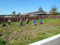 Сбор нашего урожая в отделении с.Российка